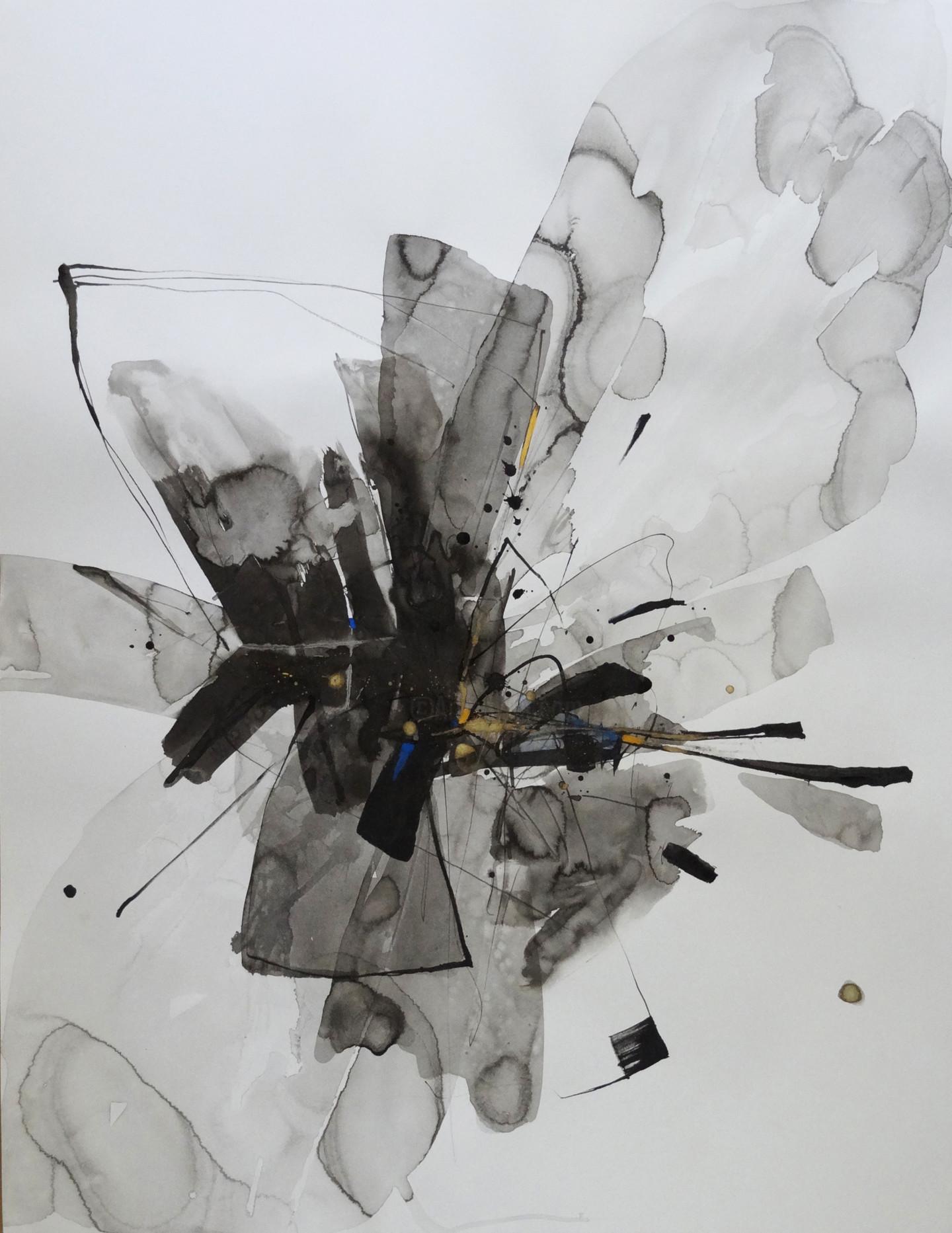 Biru Zhao - 2020 2°